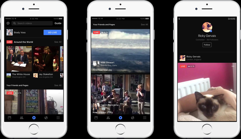 facebook-in-stream-video-ad
